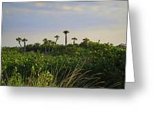 Jungle Oasis Greeting Card