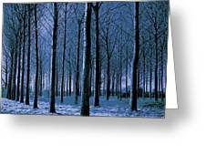 Jungle Trees In Blue  Greeting Card