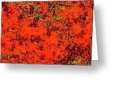 Juniper Berries 1 27 Greeting Card
