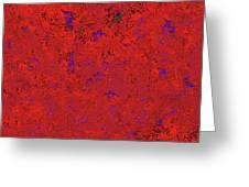 Juniper Berries 1 9 Greeting Card