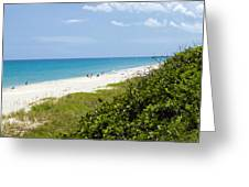 Juno Beach On The East Coast Of Florida Greeting Card