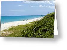 Juno Beach On The East Coast Of Florida Greeting Card