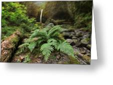 Jurassic Forest Greeting Card