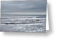 Just A Grey Day Greeting Card
