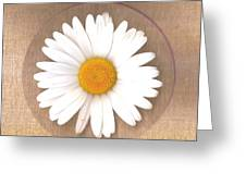 Just A Lonely Flower On Canvas Greeting Card