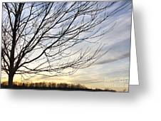 Just A Tree And Clouds Greeting Card