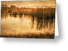 Just After Dawn Greeting Card
