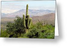 Just Arizona Greeting Card