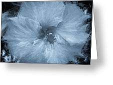 Blue Hibiscus Floral Portrait Greeting Card