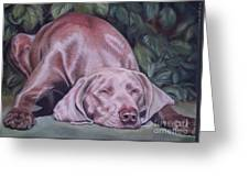 Just Lovely Weimaraner Greeting Card
