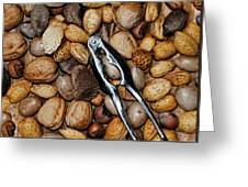 Just Nuts Greeting Card