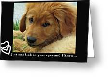Just One Look Greeting Card