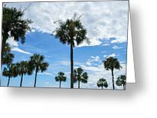 Just Palm Trees Greeting Card