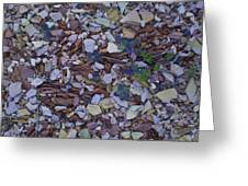 Just Stones Painting Greeting Card