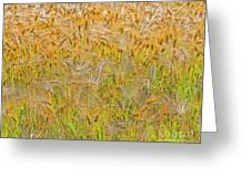 Just Wheat Greeting Card