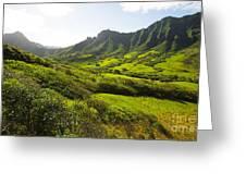 Kaaawa Valley And Kualoa Ranch Greeting Card by Dana Edmunds - Printscapes