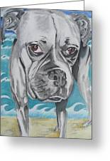 Kailey At The Beach Greeting Card