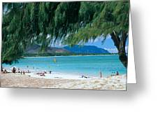 Kailua Beach Park Greeting Card