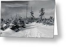 Kaiserweg, Harz Greeting Card