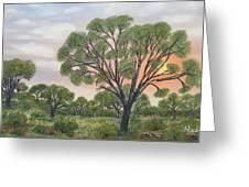 Kalahari Greeting Card