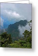 Kalalau Valley Greeting Card