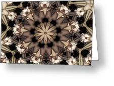 Kaleidoscope 114 Greeting Card