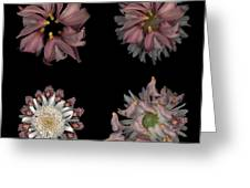Kaleidoscope Block Two Greeting Card
