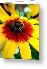 Kaleidoscope Bouquet Greeting Card