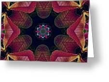 Kaleidoscope Christmas Poinsettia  Greeting Card