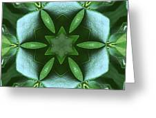 Kaleidoscope My Garden 3 Greeting Card