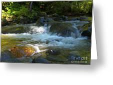 Kanaka Creek Greeting Card