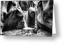 Kanarraville Falls Bw Greeting Card