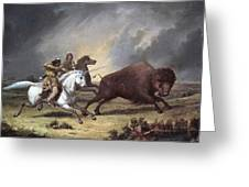 Kane: Buffalo Hunt Greeting Card
