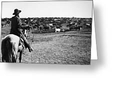 Kansas: Cattle, C1900 Greeting Card