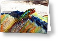 Karma Kameleon  Greeting Card