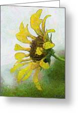 Kate's Sunflower Greeting Card
