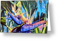 Kauai Bird Of Paradise Greeting Card