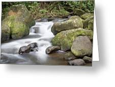 Kauai Flow Greeting Card