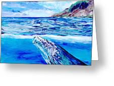 Kauai Humpback Whale Greeting Card
