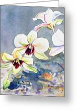Kauai Orchid Festival Greeting Card