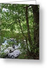 Kaulanen Lake Greeting Card