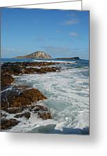 Kaupo Beach Greeting Card