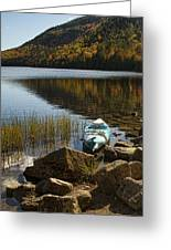 Kayaking In Acadia Greeting Card