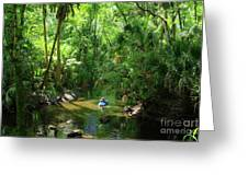 Kayaking In Tropical Paradise Greeting Card