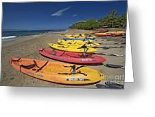 Kayas On Beach Greeting Card