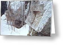 Kb Bateman Robert-silent Witness Robert Bateman Greeting Card