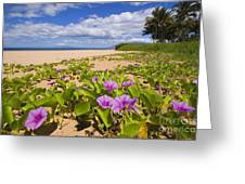 Keawakapu Beach Greeting Card