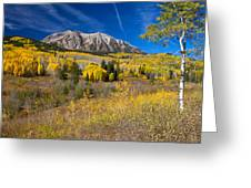 Kebler Pass Gold Greeting Card