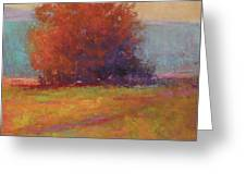 Keene Valley Field Greeting Card
