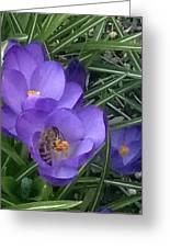 Keep The Bee Safe Greeting Card